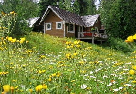 Bluebprings Cabin - Albas - Shuswap Lake