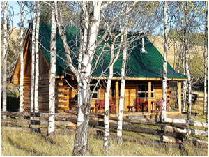 Seven Half Diamond Guest Ranch - Cabin For Rent